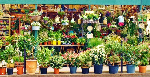 Mercado de las Flores París Wish&Fly